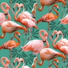 Tissu Flamants roses ile aux oiseaux - Tissu Quilt - nadege tissus , vendu par 50 cm