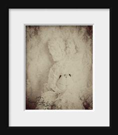 Stuffed Bunny Rabbit Childrens Wall Art Print by CrystalGaylePhoto, $30.00