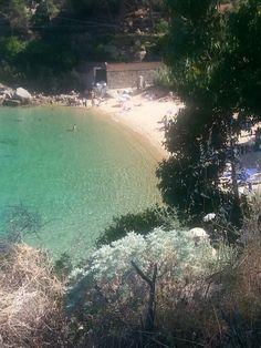 Caldana, Isola del Giglio