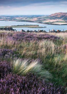 Benarty, Fife, Scotland by Tom_Drysdale