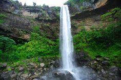 ピナイサーラの滝 滝下から見上げる落差55メートルの滝は大迫力!