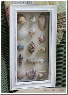 Shell shadowbox -for our Captiva and Sanibel shells