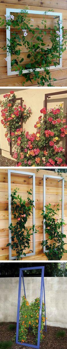 Vertical Gardening Archives - My Garden Your Garden
