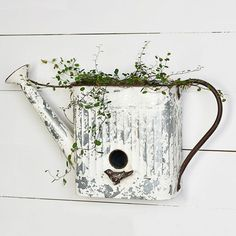 Watering Can Birdhouse Wall Planter