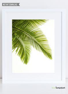 Palm Leaves Wall Art, Palm Leaf Print