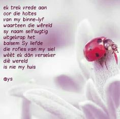 Afrikaans Quotes, Strong Quotes, Prayers, Inspirational Quotes, Positivity, Motivation, Words, Strong Mind Quotes, Inspring Quotes