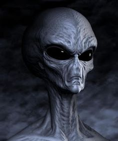 Large Gray Alien : is their a treaty in existance with these aliens? Fact or fiction - u decide....