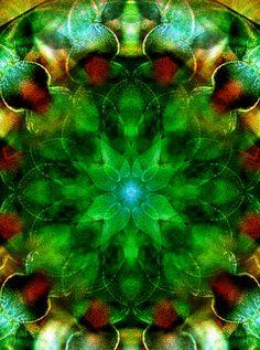 Asymmetrical Floral Mandala by Bernie Banks