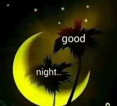 Cute Good Night, Good Night Gif, Good Night Sweet Dreams, Good Morning Picture, Good Night Image, Morning Pictures, Good Night Quotes, Gud Night Wishes, Good Night Blessings