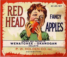 Wenatchee Washington State Red Head Red Version Apple Fruit Crate Label Print | eBay