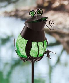 This Green Frog Solar Garden Stake by Evergreen is perfect! #zulilyfinds
