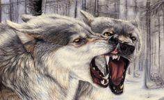 Wolf tekening