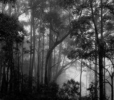 Poços de Caldas, MG, Brasil.