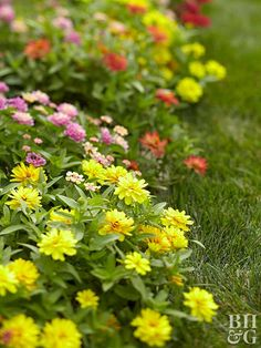 Reap the benefits of organic gardening!