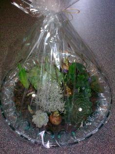 Løgplanter i glasskål