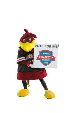 South Carolina Gamecocks: We need your vote for Cocky! He is in the Capital One Mascot Challenge again this year and voting opened today. Cocky is up against Cosmo of BYU this week. Let's win this! http://ow.ly/dqOpW