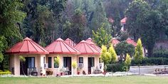 Choose a family holiday destination like jim corbett and stay in ramganga resort. Book online and find more information about budget hotels and resorts at jim corbett online from website.