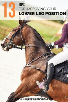 Horse Riding Tips, Horse Tips, Lower Leg Exercises, Horse Facts, For Your Legs, Riding Lessons, English Riding, Horse Training, Horse Care