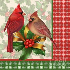 CHRISTMAS MALE AND FEMALE CARDINALS