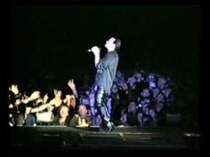 Satellite Of Love (Lou Reed cover) Live Dublin 1993 U2 Live, Satellite Of Love, Dublin, Concert, Recital, Concerts, Festivals