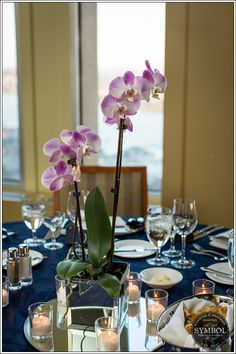 Nicely decorated with Orchids so elegant table decoration #bostonweddingphotography