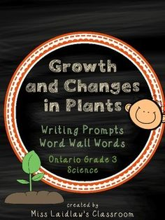 Growth and Changes in Plants: Ontario Grade 3 Science - Differentiated Grade 3 Science, Primary Science, Science Curriculum, Science Biology, Science Resources, Science Lessons, Teacher Resources, Teaching Ideas, Third Grade