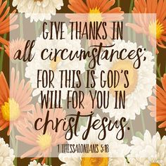 Verse of the Day: 1 Thessalonians give thanks in all circumstances; for this is God's will for you in Christ Jesus. Spend time in prayer thanking God for his goodness.