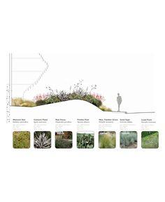 Landscape Architecture Drawing, Architecture Graphics, Landscape Plans, Urban Landscape, Landscape Design, Architecture Images, Landscape Architects, City Landscape, Plant Design