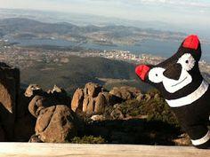 Tassie Devils: Save the Tasmanian Devil Program Tasmanian Devil, Softies, No Time For Me, Cute, Handmade, Image, Amazing, Top, Hand Made