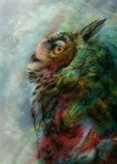 pixiewinksfairywhispers.tumblr ~~   Technicolor Dream Owl by Ethan T Melazzo    To be wise, you must first be patient. ~unknown