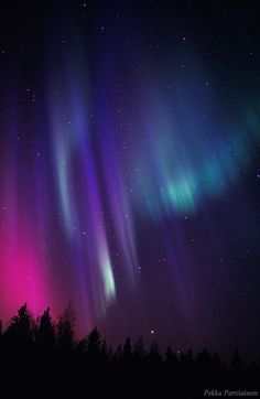 Northern lights in the night sky of Finland