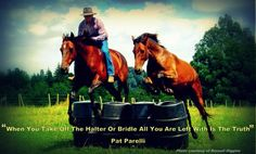 """When you take off the halter or bridle, all you are left with is the truth."" ~Pat Parelli"