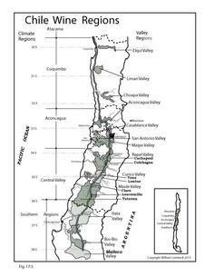 Chile Wine Regions | by @wine_educators
