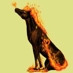 Awesome Fire Love Pony GA Coat
