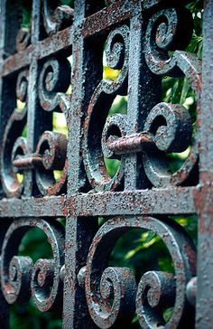 Old wrought iron garden gate