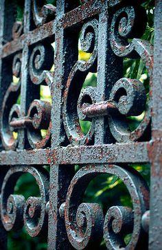 Old wrought iron garden gate
