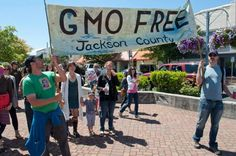 Local Governments Can Prohibit GMO Crops Says U.S. Court of Appeals