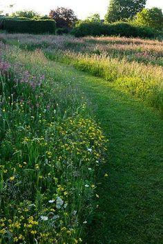 25 Beautiful Wildflower Field Ideas Our Garden Meadow Garden You are in the right place about Garden Types landscapes Here Meadow Garden, Garden Cottage, Dream Garden, Prairie Garden, Big Garden, Garden Types, Garden Paths, Garden Borders, Unique Garden