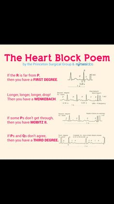 Heart blocks-- I pinned this in muscles because it has to do with the heart. This is very helpful and a great way to study. By making things rhyme, you can easily memorize something. This relates to our chapter because even though we aren't learning about heart blocks, it has to do with terminology for the heart.