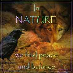 In Nature we find peace and balance. ~ Mystic Magic, FB https://www.facebook.com/pages/Mystic-Magic/170580466374754