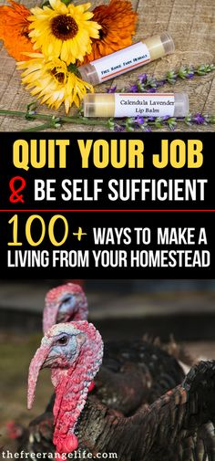 Homesteading and Survival: Read over 100 ways to make money from home off of your land and earn a living from your homestead!