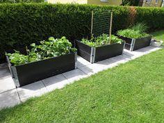 Backyard Vegetable Gardens, Veg Garden, Garden Boxes, Edible Garden, Lawn And Garden, Outdoor Gardens, Back Garden Design, Backyard Garden Design, Pallets Garden