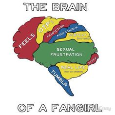 Pretty sure this is actually my brain