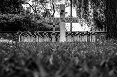 A Cross and a Poppy for Everyone Adelaide Australia  November 2014
