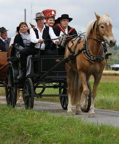 Wedding carriage in Kauhajoki, South Ostrobothnia, Finland | Hevoskyydillä Kruunuhäihin Kauhajoella. Etelä-Pohjanmaa