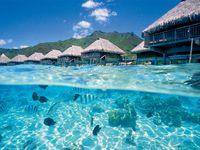 """""""愛の島""""モーレア島のリゾートで一度は体験したい水上バンガローステイ"""