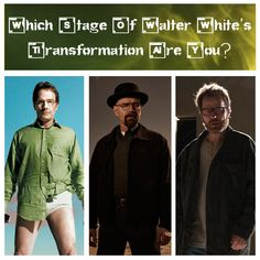 Which Stage Of Walter White's Transformation Are You?