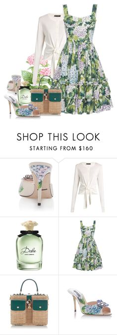 """Dolce & Gabbana Day"" by bb60477 ❤ liked on Polyvore featuring Dolce&Gabbana and Giambattista Valli"