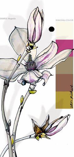 Planet Sam: Colour from the season - Magnolia white