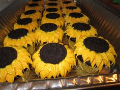 Sunflower cupcakes with an Oreo center